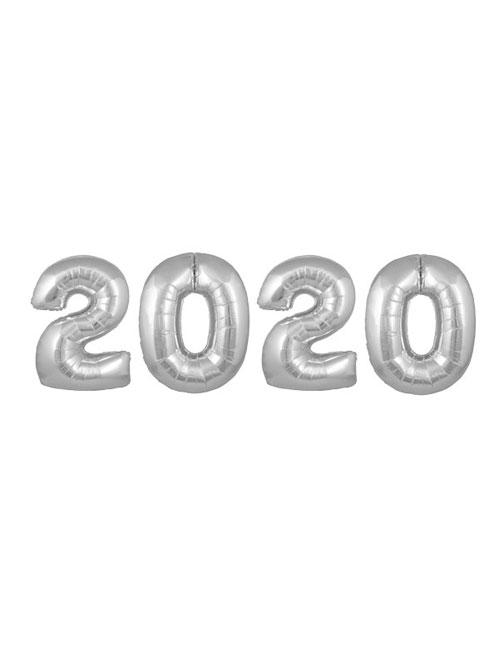 30' Silver 2020