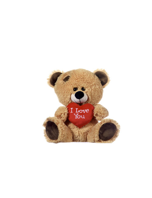 10 Brown Bear With Love Me Heart