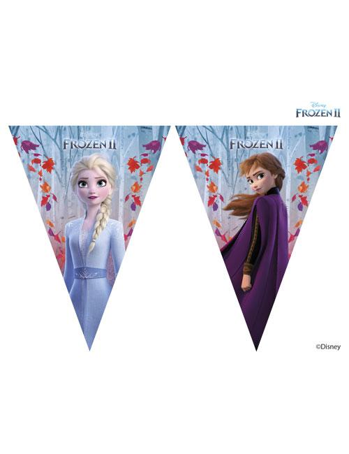Frozen 2 Triangle Banner